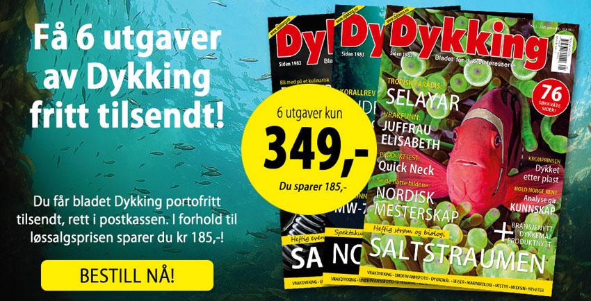 Abonnement Dykking 850px
