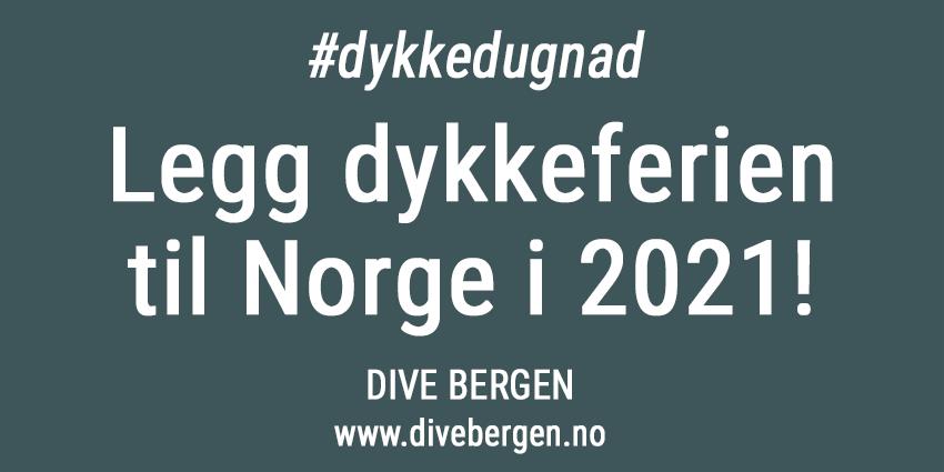 Korona-resort-divebergen-850px