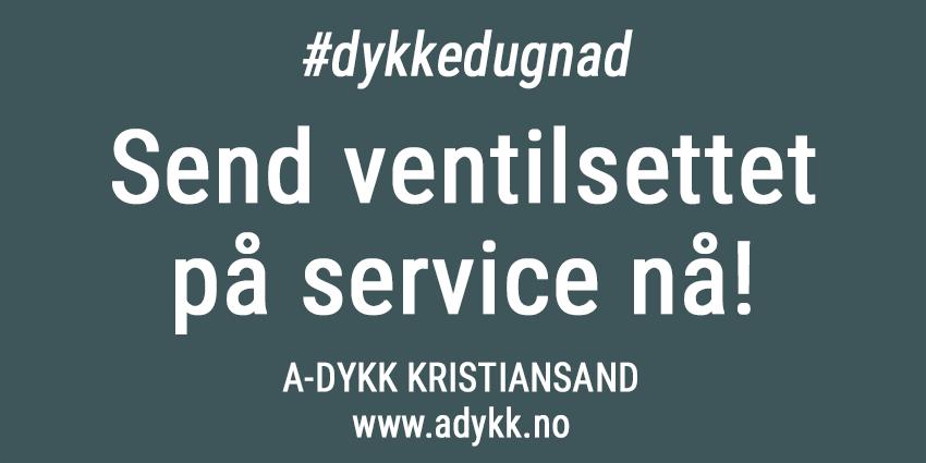 Korona-service-adykk-850px