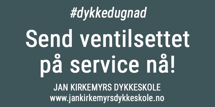 Korona-service-kirkemyr-850px