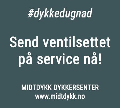Korona-service-midtdykk-350px