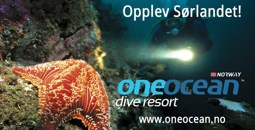 One Ocean 850px - STARFISH