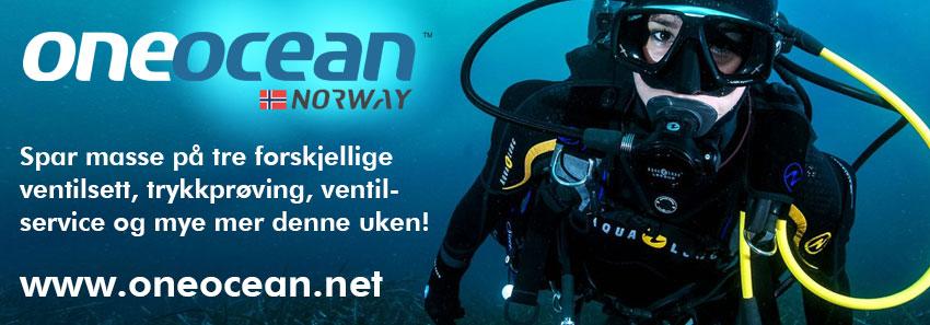 Injectbanner_1 One Ocean garasjesalg DESKTOP