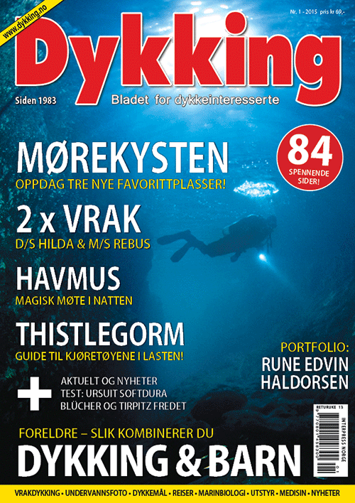 Dykking 1/2015