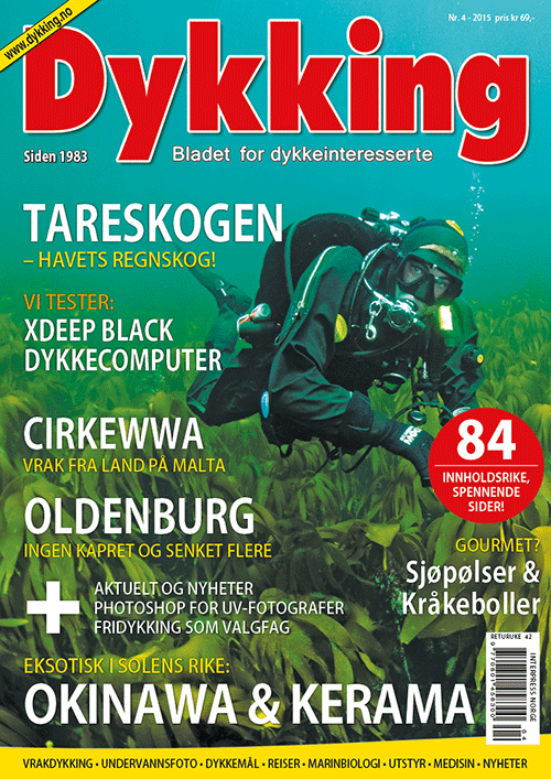 Dykking 4/2015