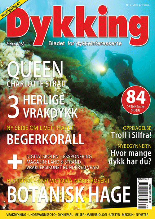 Dykking 6/2015