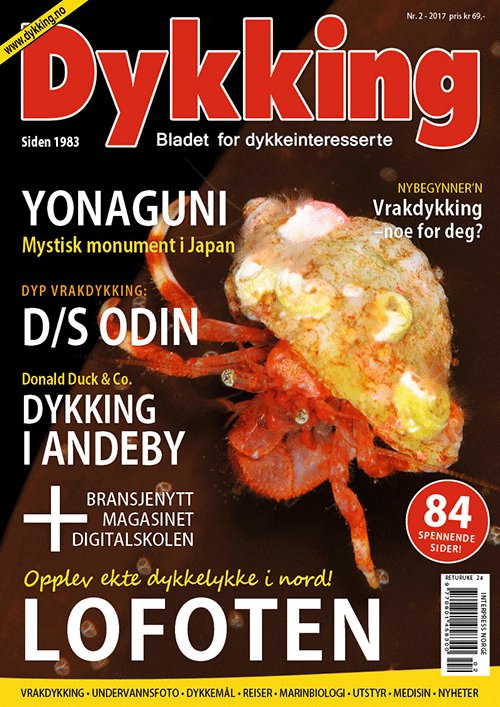 Dykking 2/2017
